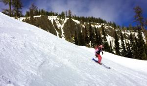 skier in a flamingo costume skiing in the sunshine