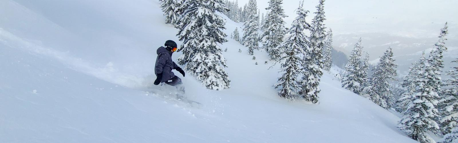 Snowboarder making a turn in powder with trees behind