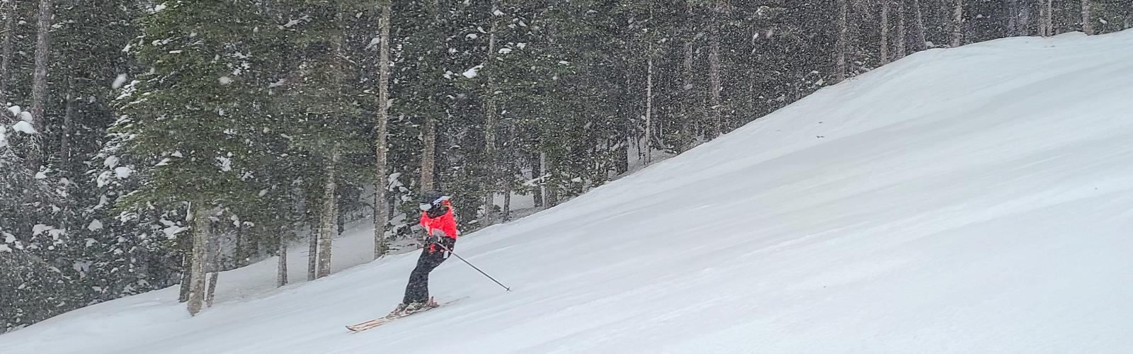 Skier making a turn with trees in the background and snowing