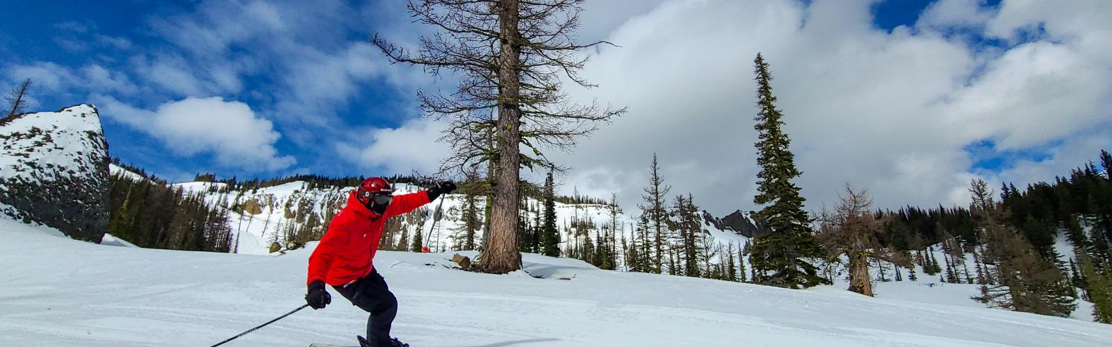 Skier going by on fresh corduroy with bomber cliffs and trees in the background