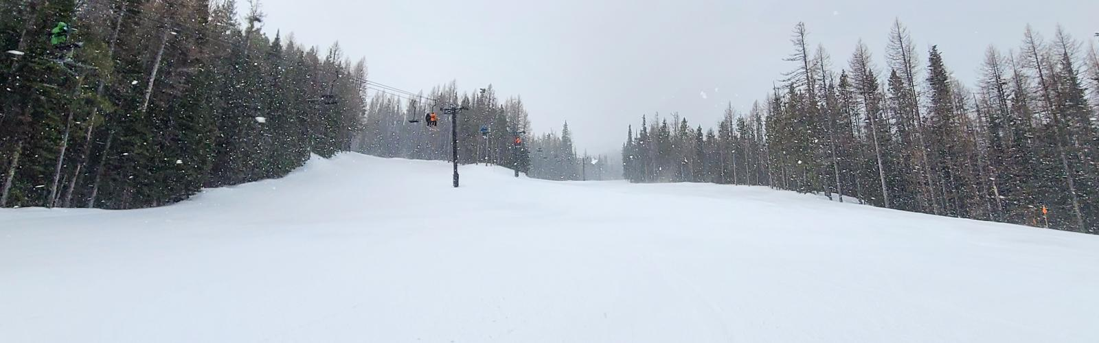 Skier making a turn while it's snowing