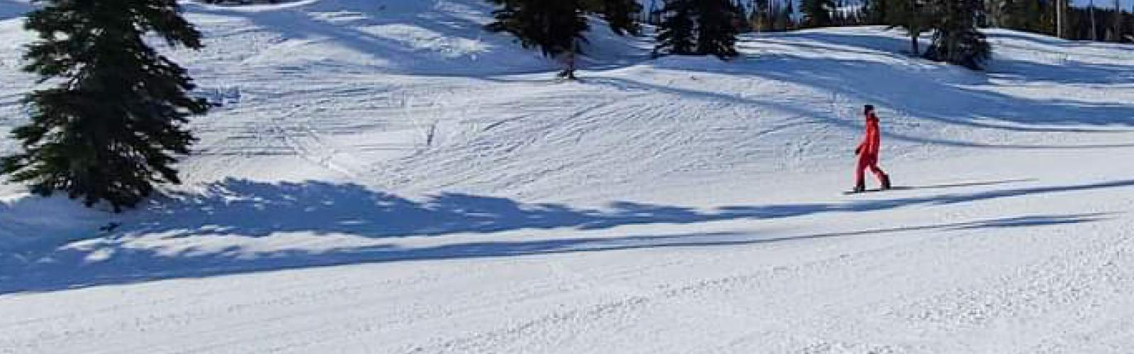Snowboarder on groomed run with trees behind