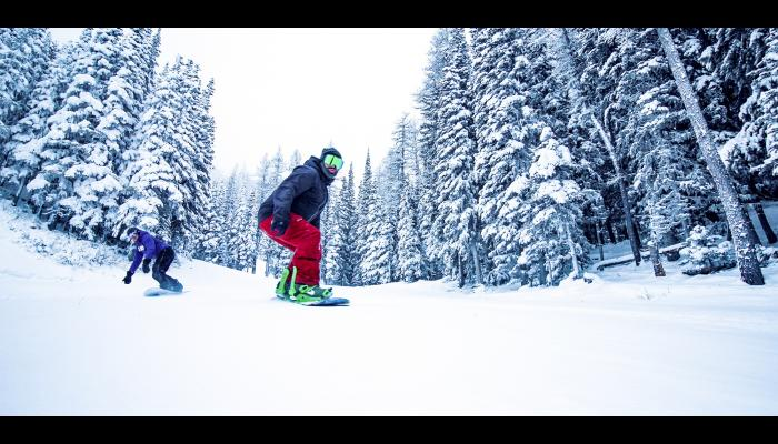 snowboard riding groomed slope with snowy trees in background