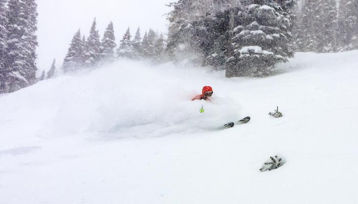 skier in deep powder snow with trees in background