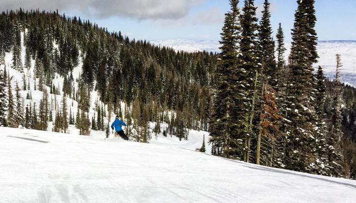 skier in blue coat on groomed run with trees in background