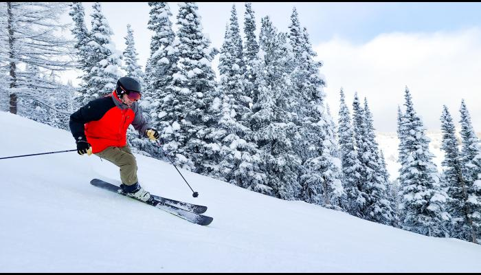 Skier making a turn with trees in the background