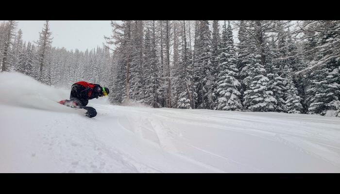 Snowboarder making a powder turn on Toketie with trees in the background