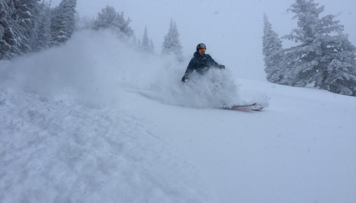 ski in deep powder