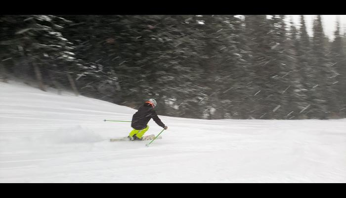 Skier making a turn while it's snowing hard and trees in the background