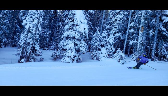 Skier making a turn on Castle run with Snow Covered trees Behind.