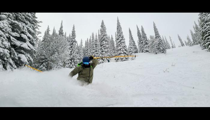 Skier doing a powder spray on Tyee run with snow covered trees in the background.