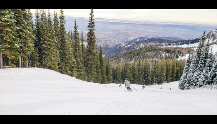 Looking at the backs of skiers making turns with the valley in the background