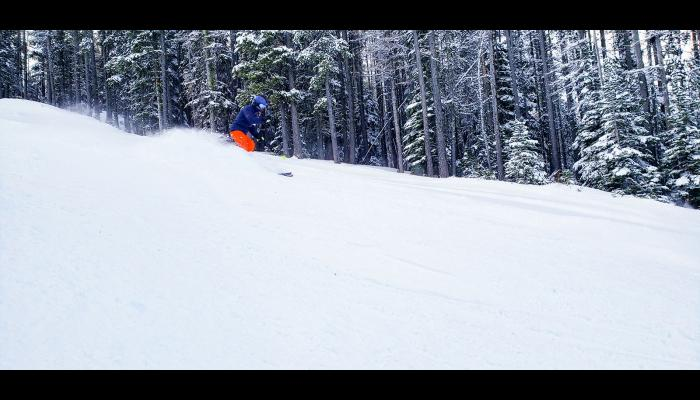 Skier making a turn in powder with trees in the background