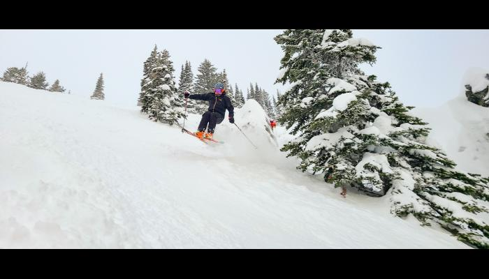 Skier jumping from between two trees